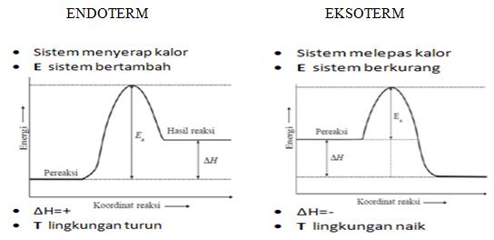 Kenali perbedaan reaksi eksoterm dan reaksi endoterm dengan mudah kenali perbedaan reaksi eksoterm dan reaksi endoterm dengan mudah bisakimia ccuart Image collections